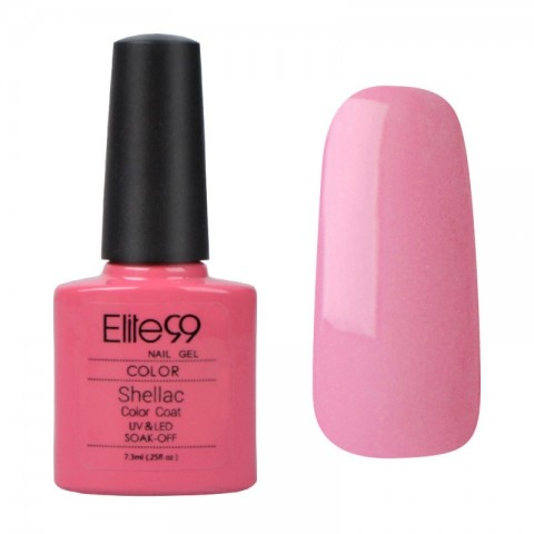 ELITE99 SHELLAC - GOTCHA 40522